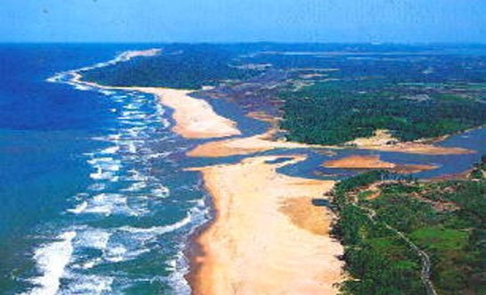 Ecosistema costero. Centro América.